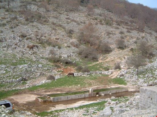 località canai (1300 msl circa)