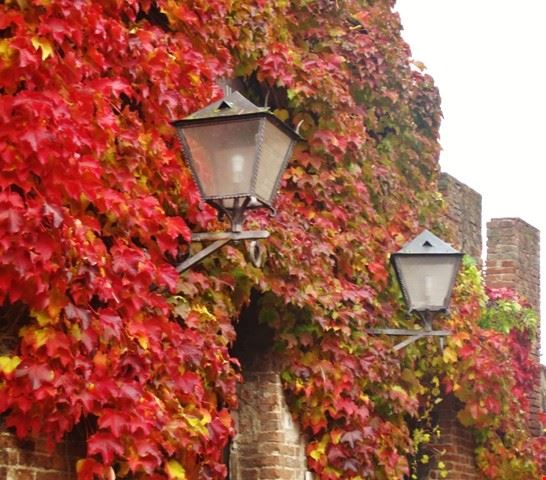 Autunno in Toscana - Borgo medievale di Certaldo Alto (FI)