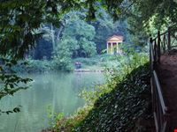 monza parco di monza