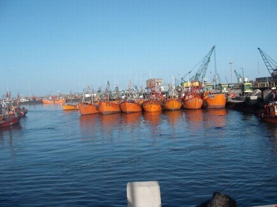 porto mar del plata