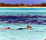 los roques snorkeling