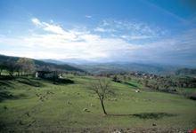 Paesaggio tra Canossa e Rossena