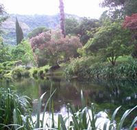 natura sul fiume Ninfa