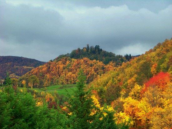 colori d autunno montetortore zocca