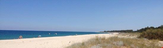 la spiaggia di S.Andrea , patria delle tartarughe :)