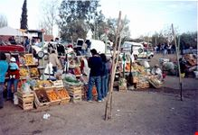 mercato nel challao mendoza