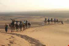marrakech viaggio in camelli
