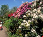 birmingham giardino botanico
