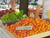 ljubljana apricots