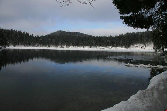 67924 tarvisio laghi di fusine