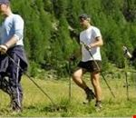 Nordic walking in Val Comelico