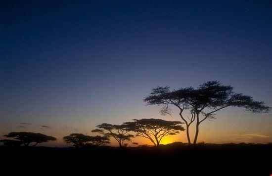 Kenya incantevole
