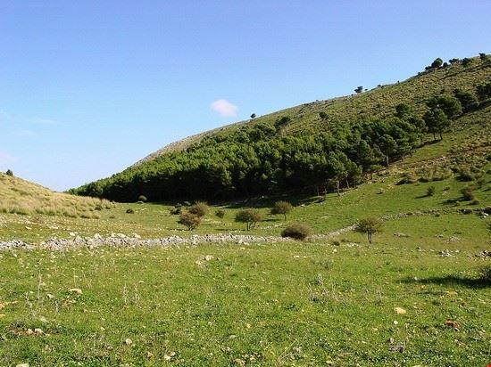 70372 san vito lo capo bosco di scardina riserva naturale dello zingaro