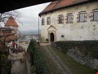 Interno castello di Bled - Palazzo dove si produce ancora vino