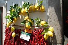 amalfi limoni e peperoncini ad amalfi