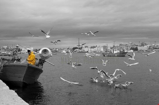 Taranto una vita per il mare