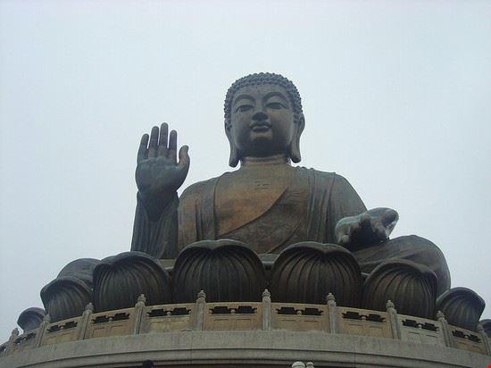 70936 hong kong buddha gigante