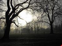 Hyde Park all'alba