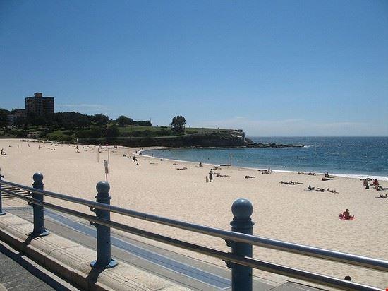 71653 sydney la spiaggia di coogee