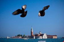abano terme venezia