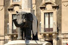 catania fontana dell elefante