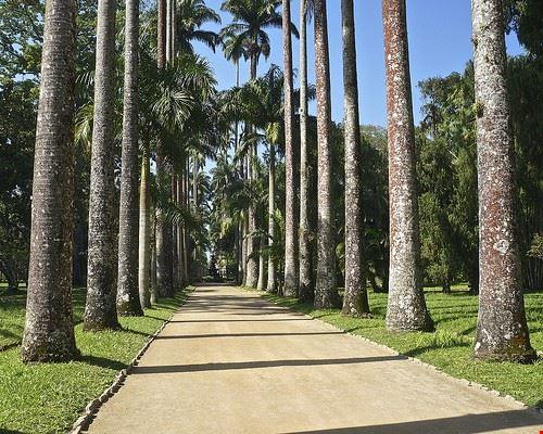 73238  giardino botanico