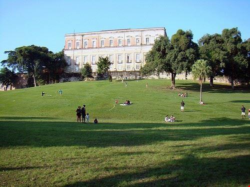 museo nazionale ufrj