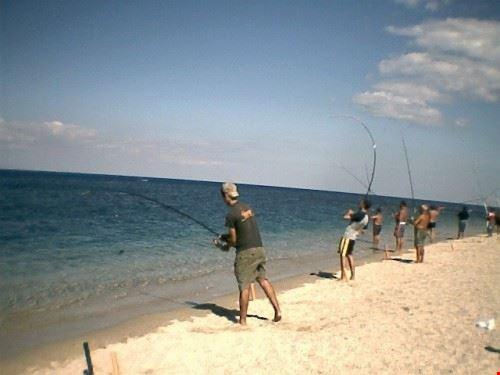 pesca al tonno da agosto