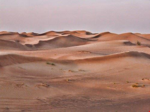 73413  deserto