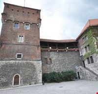 73440  castello del wawel