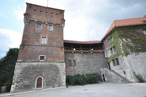 castello del wawel