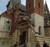 73445  cattedrale di wawel