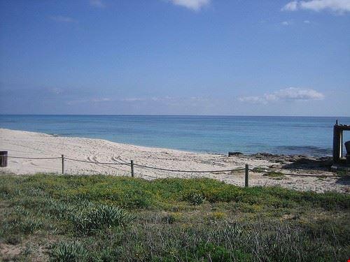 73513  spiaggia di migjorn