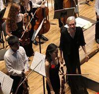 74217  chicago symphony orchestra