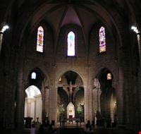 74238  la cattedrale