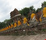 buddha a colori ayutthaya