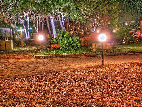74397  parco gondar