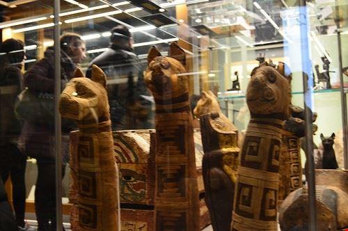 74717  museo egizio di torino