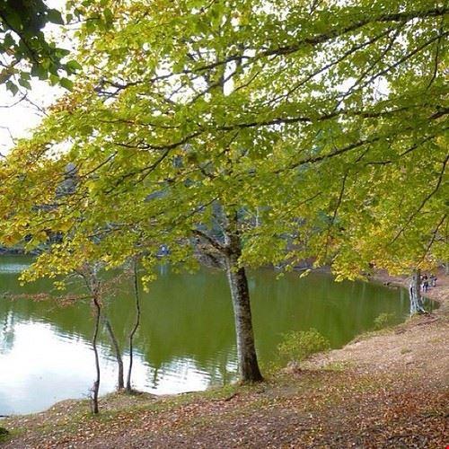 74829  parco nazionale del gargano