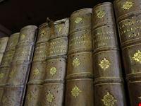 biblioteca gambalunghiana