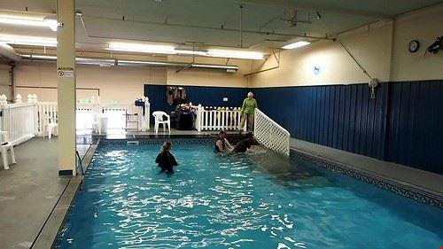 75800  piscina coperta scoperta mar dolomit sauna massaggi solarium