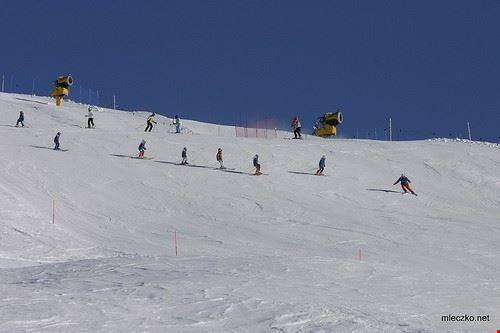 75801  scuola di sci saslong