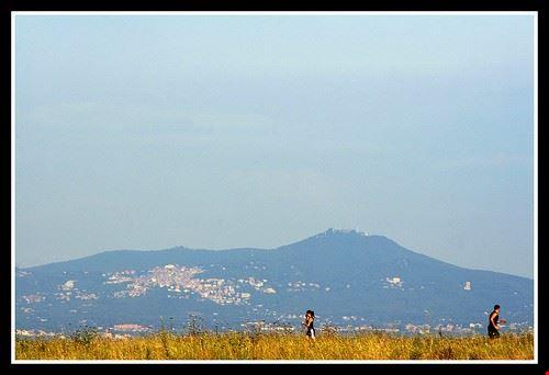 75865  parco regionale dei castelli romani