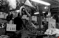 il mercato rionale di rocca di papa