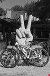 noleggio bici folgaria bike rent