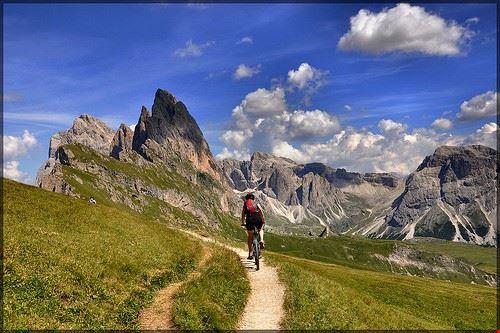 76014  in mountain bike