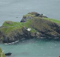 Carrick-a-Rede Rope Bridge 3.jpg