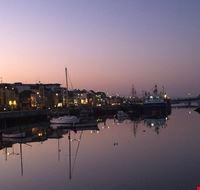 wexford porto