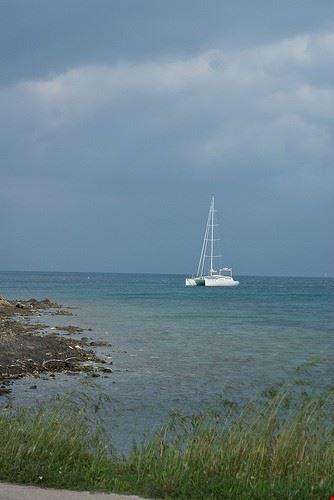 uscita in barca a vela verso l asinara