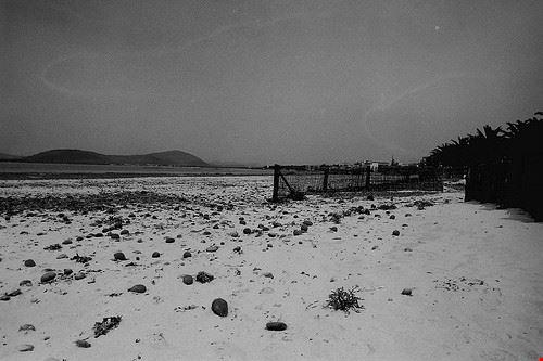 76405  le spiagge di alghero
